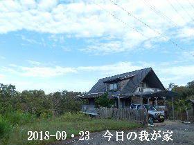 2018-09・23 今日の里山・・・ (1).JPG