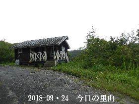 2018-09・24 今日の里山は・・・ (2).JPG