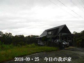 2018-09・25 今日の里山は・・・ (1).JPG
