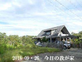2018-09・26 今日の里山は・・・ (1).JPG