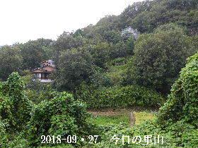 2018-09・27 今日の里山は・・・ (4).JPG