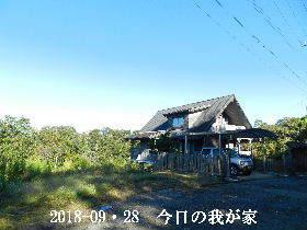 2018-09・28 今日の里山は・・・ (1).JPG