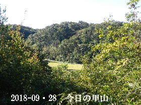 2018-09・28 今日の里山は・・・ (3).JPG