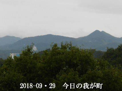 2018-09・29 今日の我が町 .JPG