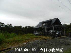 2018-09・29 今日の里山は・・・ (1).JPG
