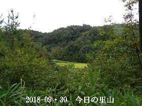 2018-09・30 今日の里山は・・・ (3).JPG
