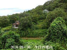 2018-09・30 今日の里山は・・・ (4).JPG