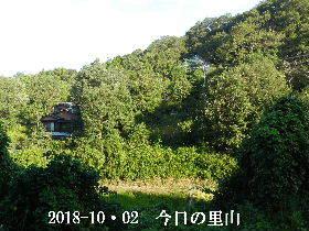2018-10・02 今日の里山は・・・ (4).JPG