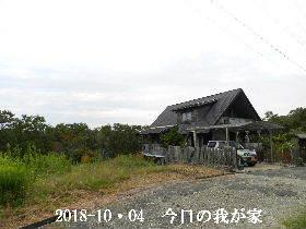 2018-10・04 今日の里山は・・・ (1).JPG