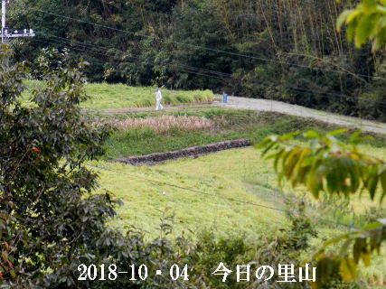2018-10・04 今日の里山は・・・ (4).JPG