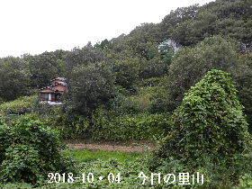2018-10・04 今日の里山は・・・ (5).JPG