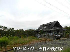2018-10・05 今日の里山は・・・ (1).JPG