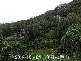 2018-10・05 今日の里山は・・・ (4).JPG