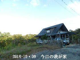 2018-10・09 今日の里山は・・・ (1).JPG