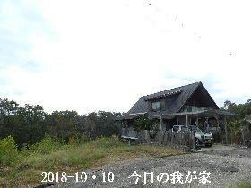 2018-10・10 今日の里山は・・・ (1).JPG