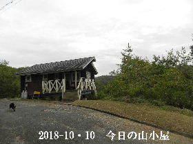 2018-10・10 今日の里山は・・・ (2).JPG