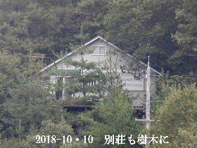 2018-10・10 隣家も樹木に囲まれて (2).JPG