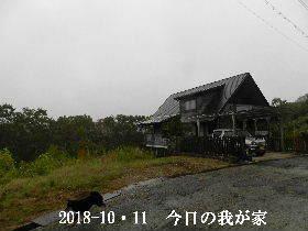 2018-10・11 今日の里山は・・・ (1).JPG
