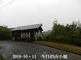 2018-10・11 今日の里山は・・・ (2).JPG