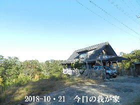 2018-10・21 今日の里山は・・・ (1).JPG