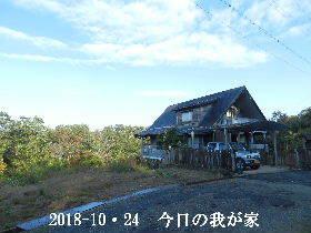 2018-10・24 今日の里山は・・・ (1).JPG