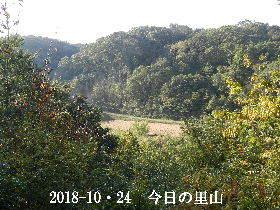 2018-10・24 今日の里山は・・・ (3).JPG