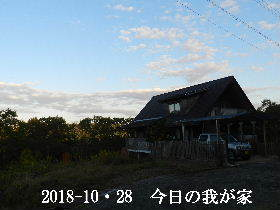 2018-10・28 今日の里山は・・・ (1).JPG