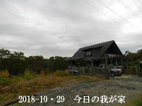 2018-10・29 今日の里山は・・・ (1).JPG