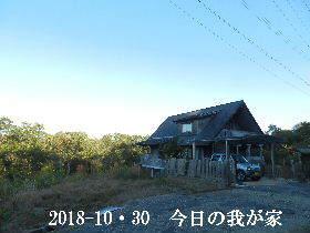 2018-10・30 今日の里山は・・・ (1).JPG
