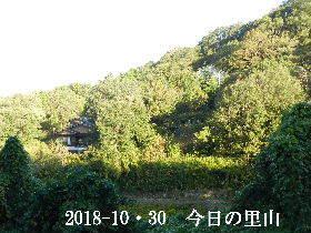 2018-10・30 今日の里山は・・・ (4).JPG