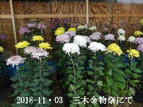 2018-11・03 三木金物祭にて (12).JPG