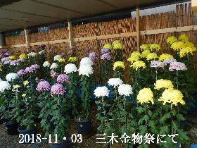 2018-11・03 三木金物祭にて (13).JPG