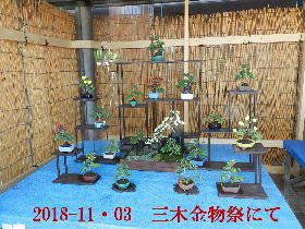 2018-11・03 三木金物祭にて (4).JPG