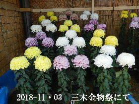 2018-11・03 三木金物祭にて (7).JPG