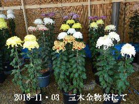 2018-11・03 三木金物祭にて (9).JPG