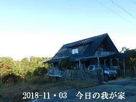 2018-11・03 今日の里山は・・・ (1).JPG