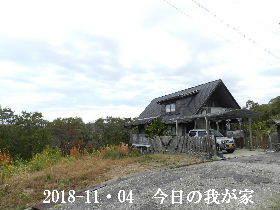 2018-11・04 今日の里山は・・・ (1).JPG
