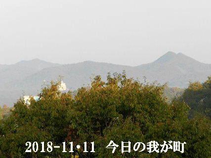 2018-11・11 今日の我が町.JPG