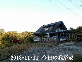 2018-11・11 今日の里山は・・・ (1).JPG