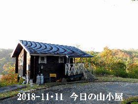 2018-11・11 今日の里山は・・・ (2).JPG