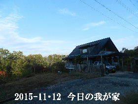 2018-11・12 今日の里山は・・・ (1).JPG