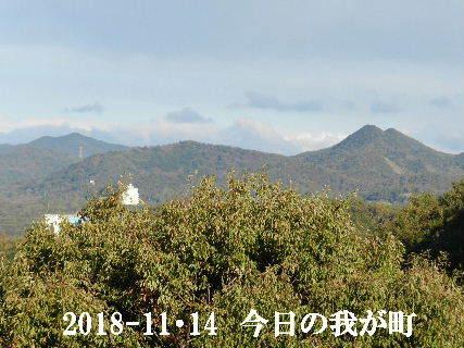 2018-11・14 今日の我が町.JPG