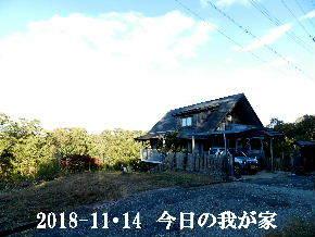 2018-11・14 今日の里山は・・・ (1).JPG