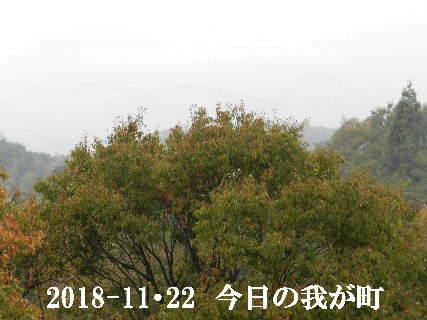 2018-11・22 今日の我が町.JPG