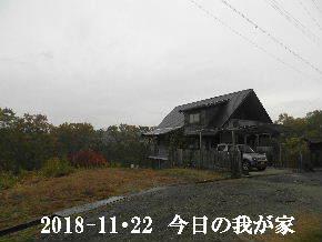 2018-11・22 今日の里山は・・・ (1).JPG