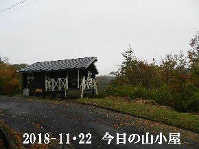 2018-11・22 今日の里山は・・・ (2).JPG