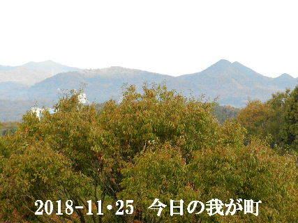 2018-11・25 今日の我が町.JPG