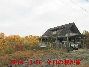 2018-11・26 今日の里山は・・・ (1).JPG