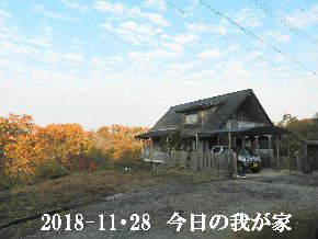 2018-11・28 今日の里山は・・・ (1).JPG