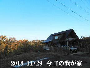 2018-11・29 今日の里山は・・・ (1).JPG